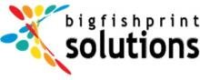 Big Fish Solutions